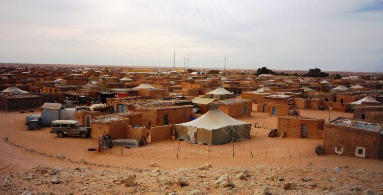 Saharaui