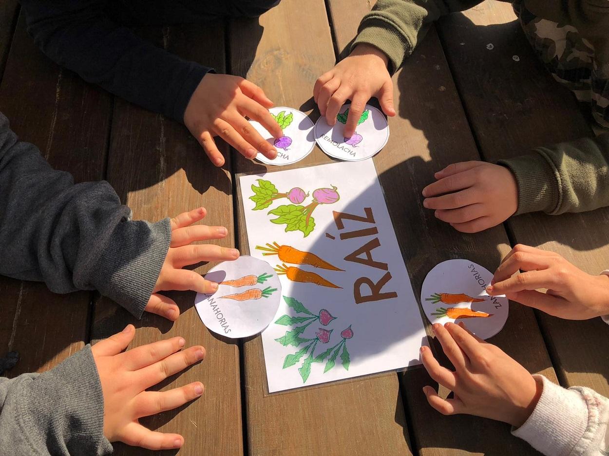 La alimentación sostenible en las aulas para garantizar un futuro