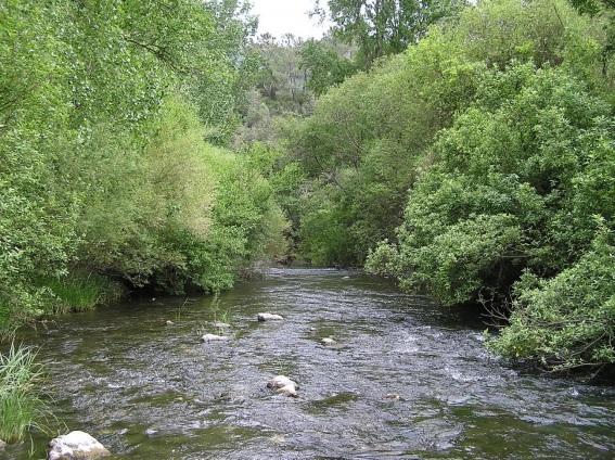 Ecologismo de emergencia - Un ejemplo nacional de destrucción de ríos: la provincia de Málaga 2
