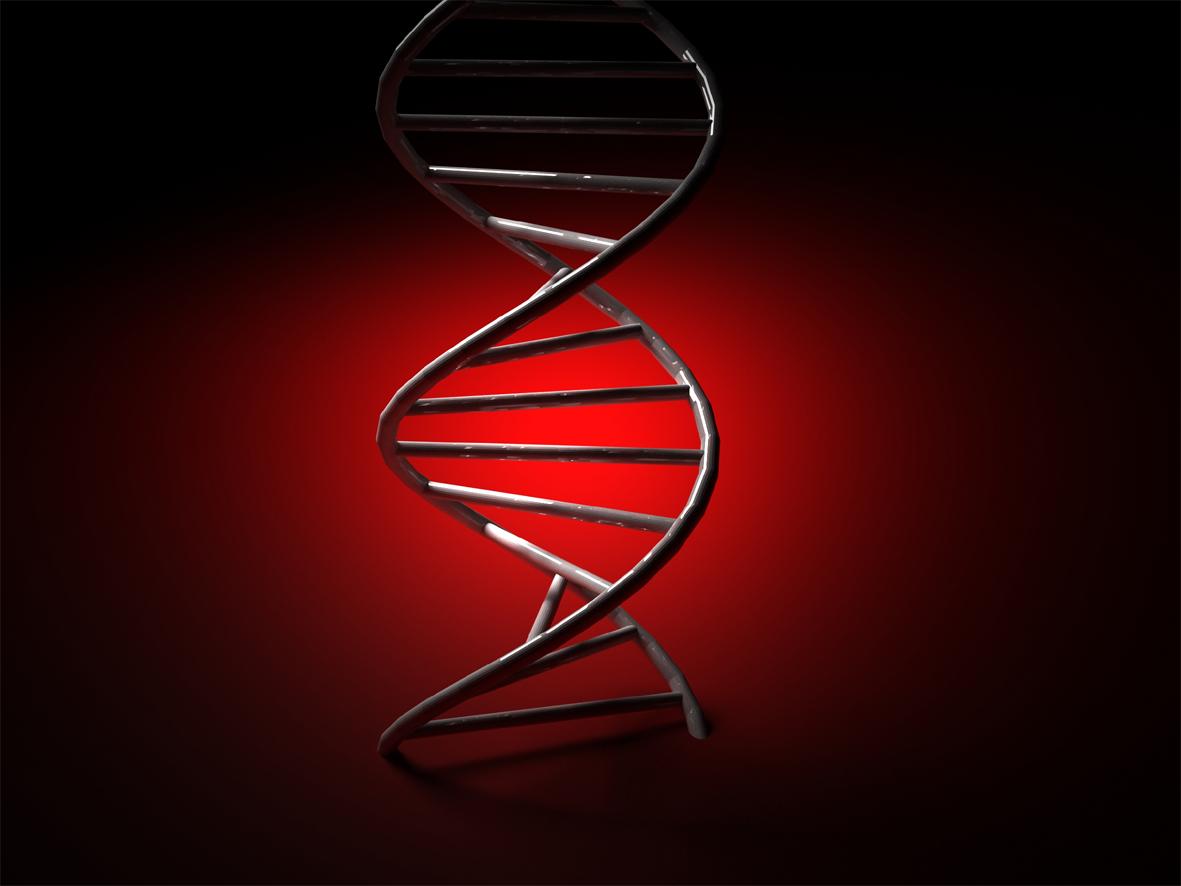 http://blogs.publico.es/kaostica/files/2014/11/PososAnarqu%C3%ADa_ADN.jpg