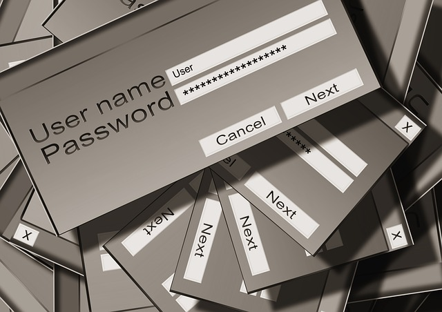 PososAnarquía_Seguridad_IT