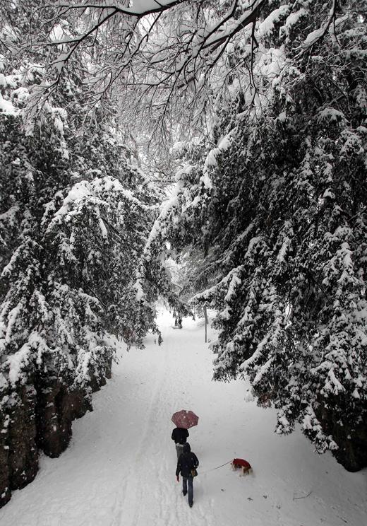 nieve6.jpg