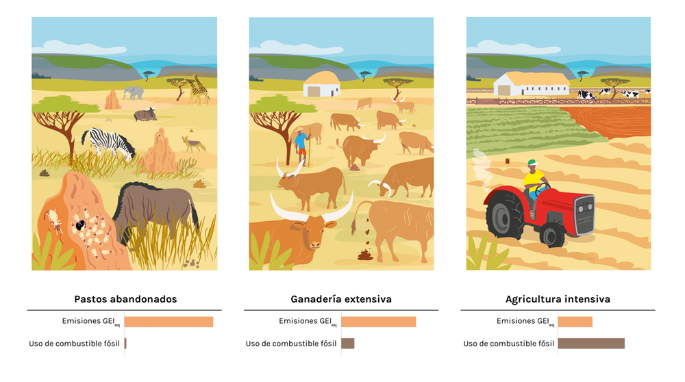 Emisiones y uso de combustible de pastos abandonados, ganadería extensiva y agricultura intensiva. @laclara.es/traducido y modificado del original en 'Climate Research', Author provided