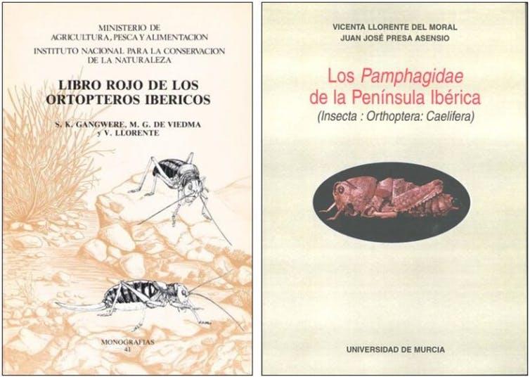 Algunas portadas de los libros de Vicenta Llorente del Moral.