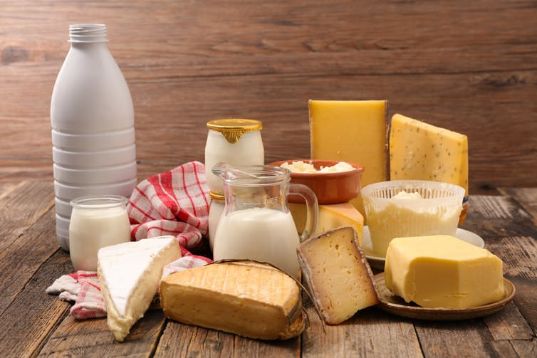 El ser humano empezó a fermentar leche para elaborar quesos y yogures hace unos 6.000 años. Margouillat photo/Shutterstock