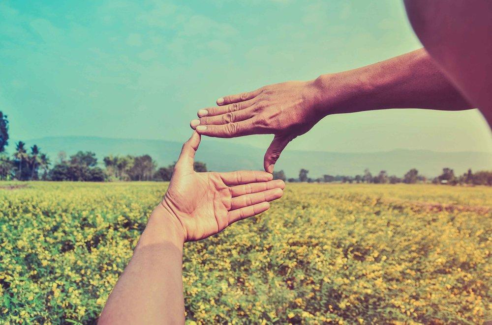 Lovelyday12 / Shutterstock
