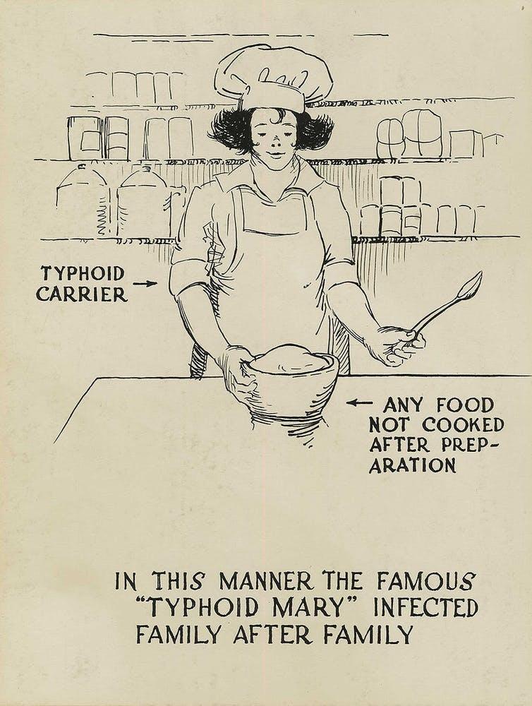 Manera en la que Mary Mallon infectaba a las familias para las que trabajaba. Wikimedia Commons