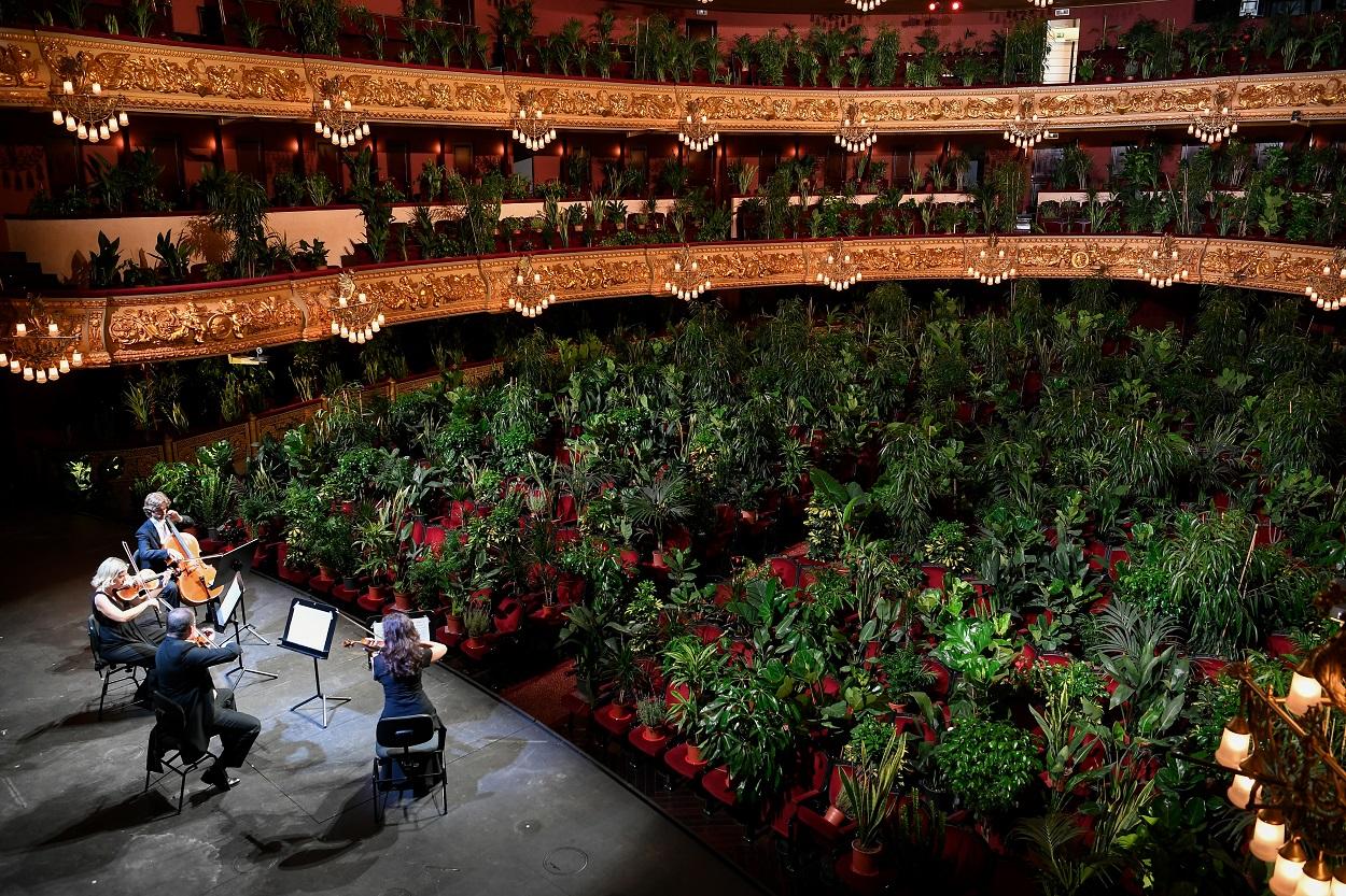 Las plantas ocupan el espacio de los espectadores en el Teatro del Liceu, de Barcelona, en el primer espectáculo en la sala tras la crisis del coronavirus. AFP/LLUIS GENE