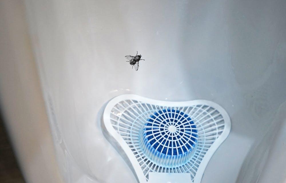 Pegatina de mosca en los urinarios masculinos para mejorar la puntería. Shutterstock / chettarin / Marta Cerezo