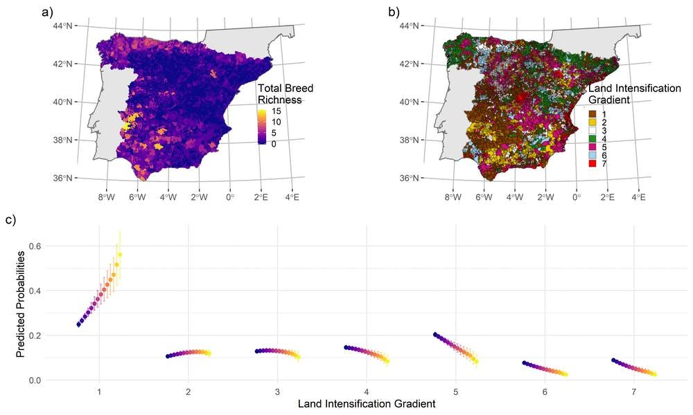 a) Mapa de la riqueza de razas autóctonas por municipio; b) mapa del gradiente de intensificación de usos del suelo debido al abandono agrario (1), la extensificación (2), la estabilidad (3), los cambios forestales (4), intensificación agraria (5), la deforestación (6) y la: artificialización (7), y c) probabilidad de que las razas se encuentren en municipios donde predomina los cambios de uso del suelo (1-7). Author provided