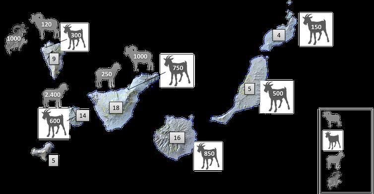 Número estimado de ejemplares de herbívoros por isla según consulta a expertos