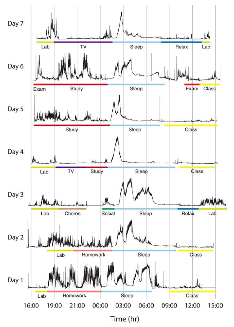 Actividad cerebral de un alumno durante los siete días de la semana. TELOS