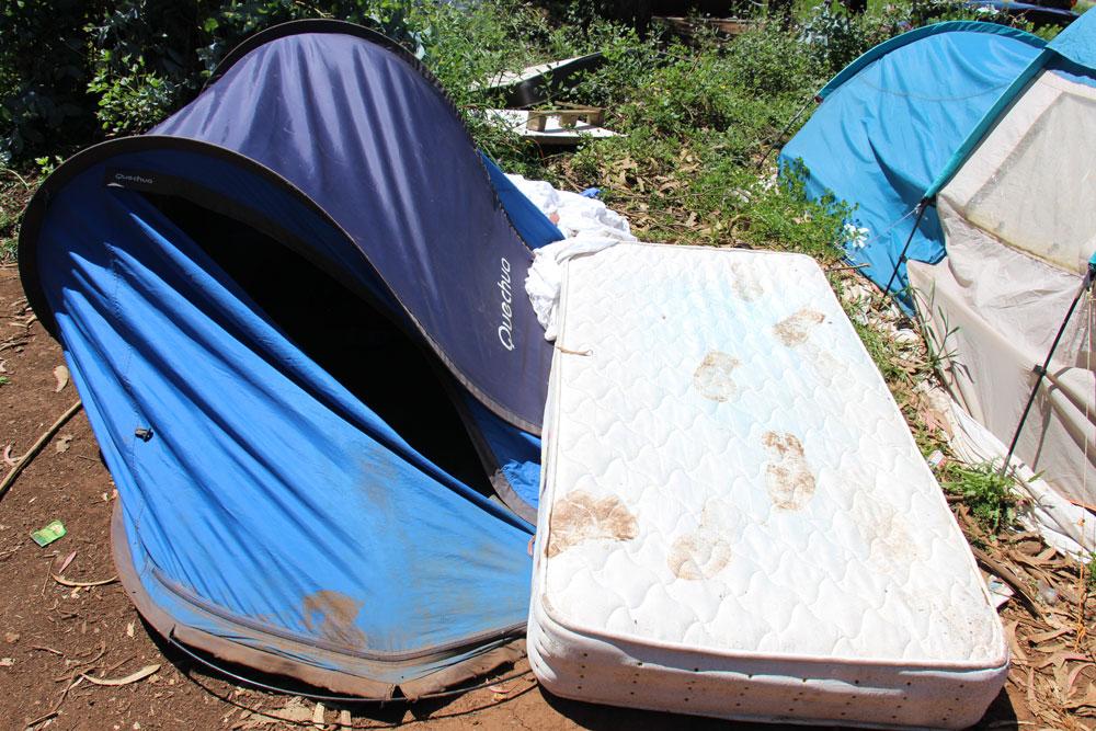 Campamento Las Raíces.- ANA GÓMEZ PÉREZ-NIEVAS
