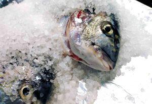 Dorada a la sal: la receta que saca lo mejor de este pescado