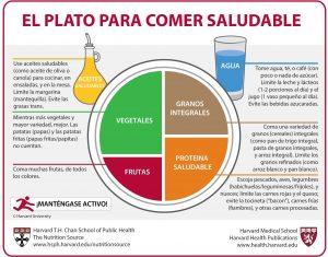 El Plato de Harvard: la guía más intuitiva para comer saludable
