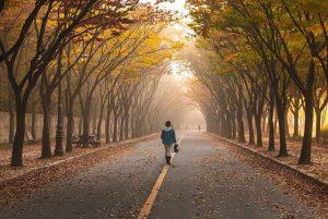 El mito de los 10.000 pasos o cuánto necesitamos caminar a diario