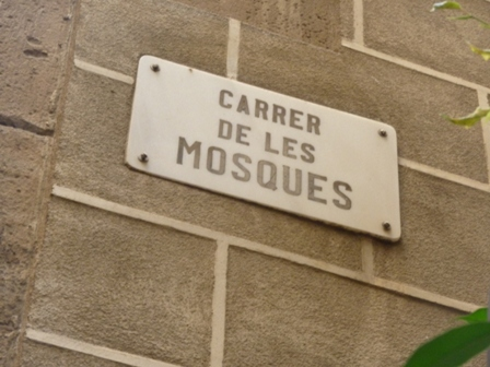 carrer mosques