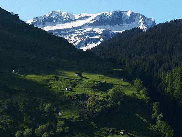 image_manager__content_7132_vals3